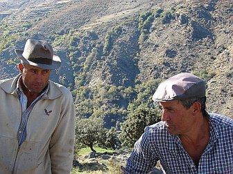 Foto von zwei Schäfern mit sonnigem Tal im Hintergrund